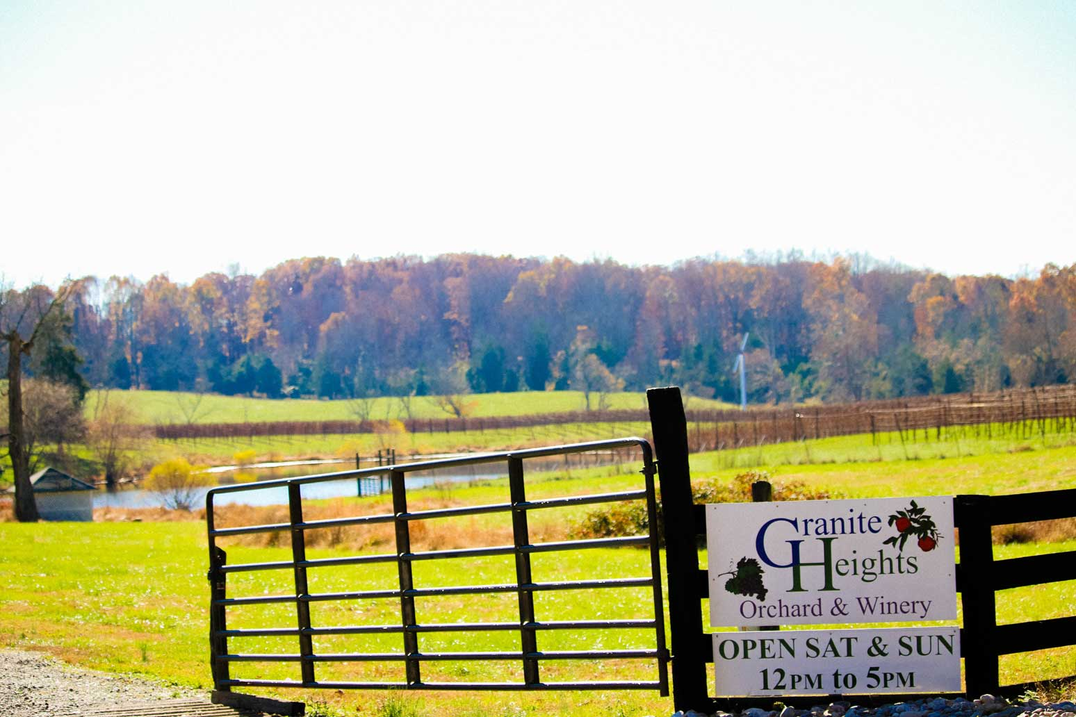 Granite Heights Orchard and Winery in Warrenton, VA